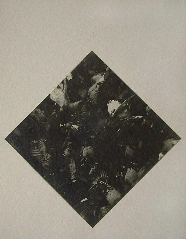 Untitled_2_1989b2